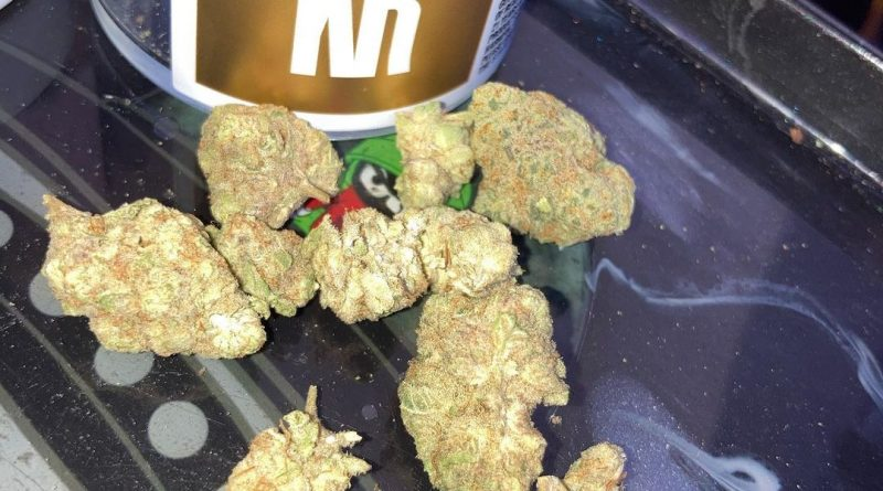 waffle cone by kingston royal strain review by sjweed.review