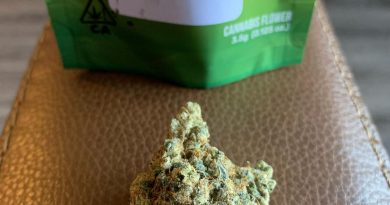 animal face by seed junky genetics strain review by christianlovescannabis