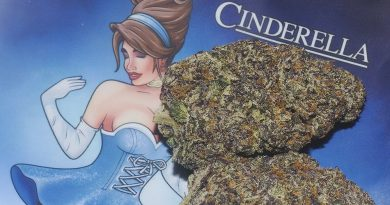 cinderella by trufflez strain review by bigwhiteash