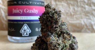 juicy gummy by atrium cultivation strain review by christianlovescannabis
