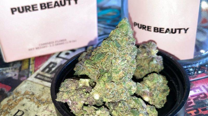 mendo breathmendo breath by pure beauty strain review by sjweed.review by pure beauty strain review by sjweed.review
