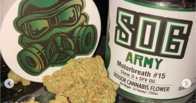 motorbreath 15 by sog army strain review by sjweed.review
