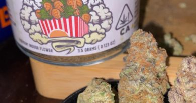 peanut butter pop by rio vista farms strain review by trunorcal420 2