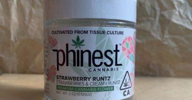 strawberry runtz by phinest cannabis strain review by christianlovescannabis 3