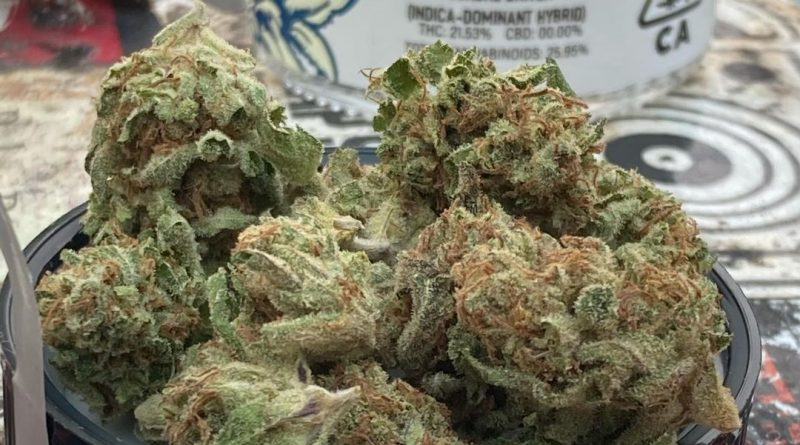 sundae driver by cypress cannabis strain review by sjweed.review