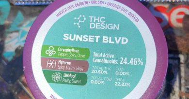 sunset blvd by thc design strain review by sjweed.review