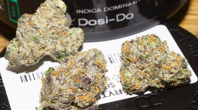 dosi-dos by rythm strain review by bigwhiteash