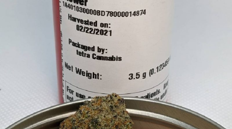pineapple kiwi by phyre strain review by pdxstoneman