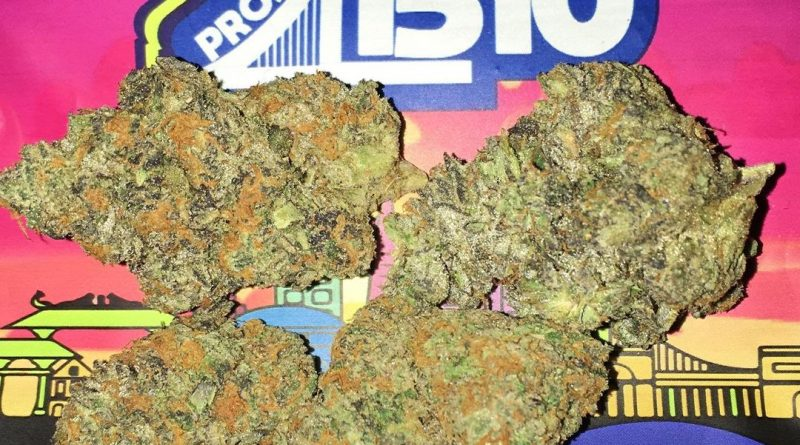 project 41510 by grandiflora strain review by boofbusters420