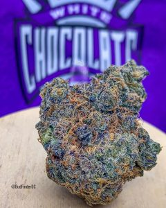 white chocolate 55 by finsley farms strain review by budfinderdc
