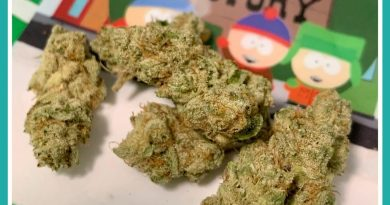 cake crashers from trichome factory strain review by the_originalcannaseur