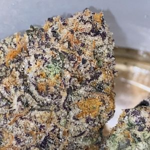 maroon baboon by sf cultivators strain review by trunorcal420 3