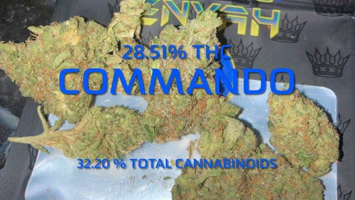 commando by king klone strain review by sjweedreview