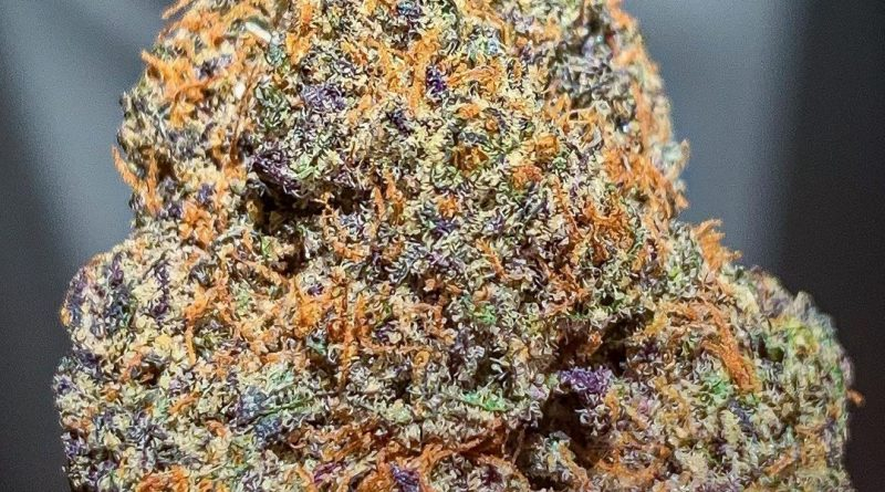 princess cut by diamondfire strain review by budfinderdc