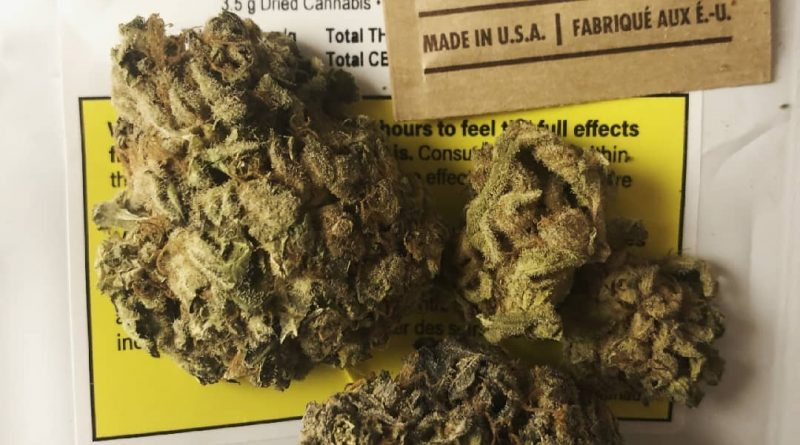 berry white by caliber strain review by terple grapes
