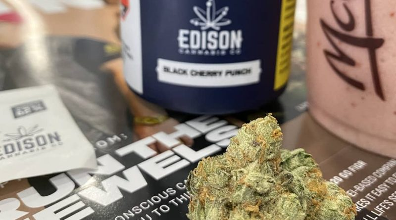 black cherry punch by edison cannabis co strain review by terple grapes