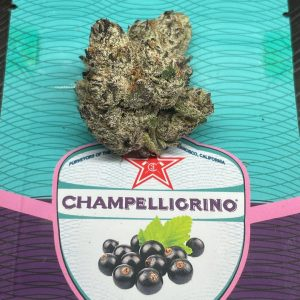 cassis by champelli strain review by cannasseur777 2