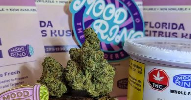 florida citrus kush by mood ring strain review by terple grapes