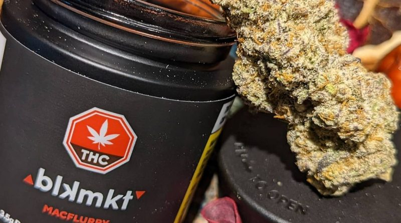 macflurry by blkmkt strain review by terple grapes