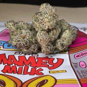 mamey's milk by mamey's bodega strain review by cannasseur777 2