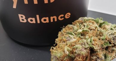 moonrise by rythm strain review by yourhostnoah
