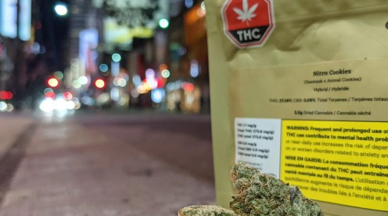 nitro cookies by organnicraft strain review by terple grapes