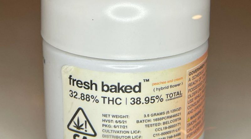 peaches and cream by fresh baked strain review by cannasseur777